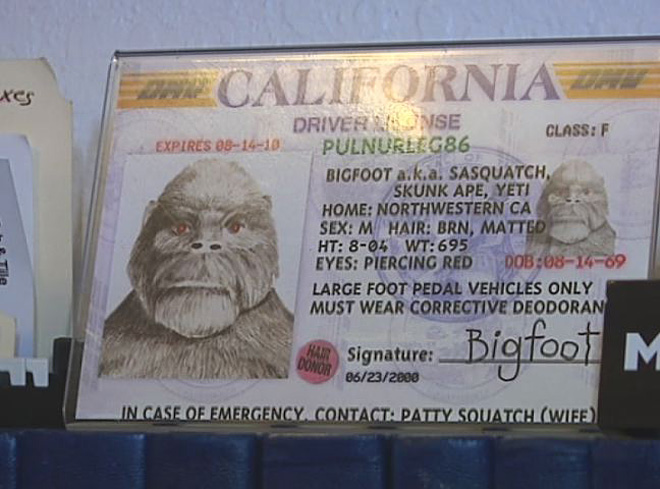 KPIC Bigfoot Believers (5)