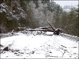 Landslide closes section of highway 126