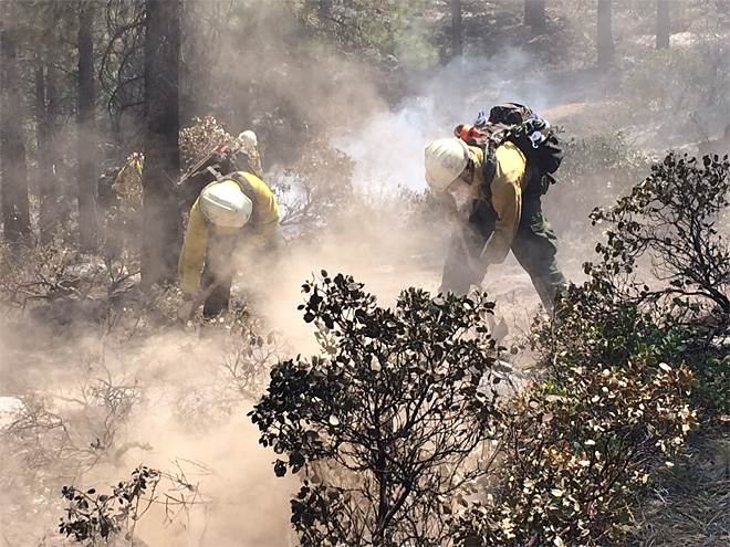 Lakeview BLM hand crews June 9 on Two Bulls Fire (2)