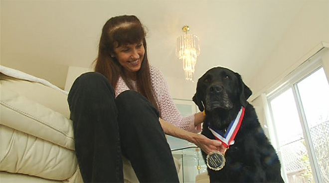 Service dog inducted into Hall of Fame: 'He's the best pair of eyes'