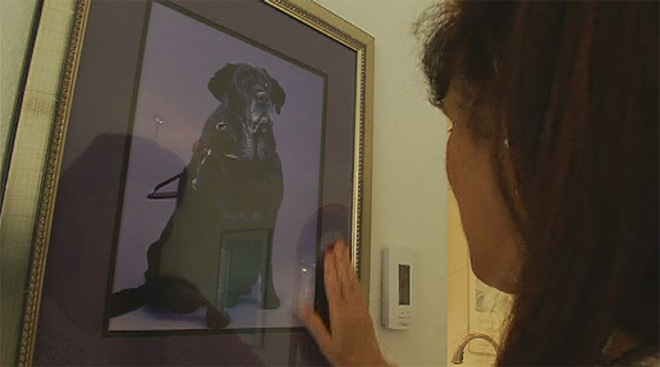 Local service dog inducted into Oregon Animal Hall Of Fame