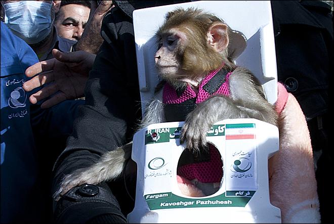 Iran sends second monkey into space