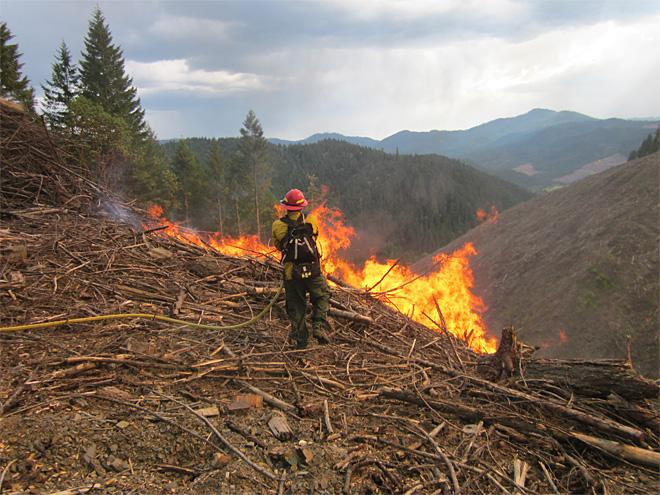 Shively Creek Fire 20% contained, no growth