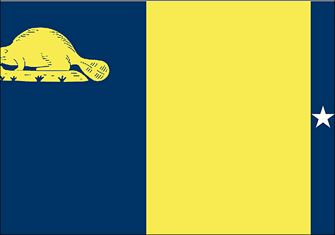 New Oregon flag