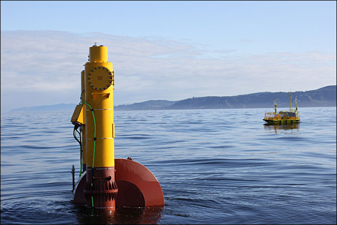 Wave power buoy and sentinel