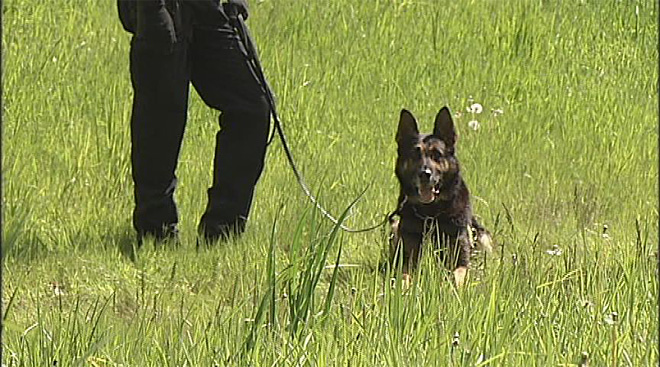 Oregon Police Canine Association training April 30 (11)