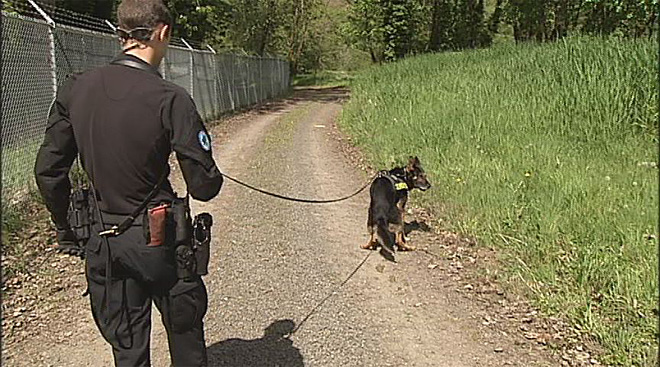 Oregon Police Canine Association training April 30 (14)