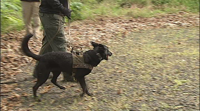 Oregon Police Canine Association training April 30 (16)