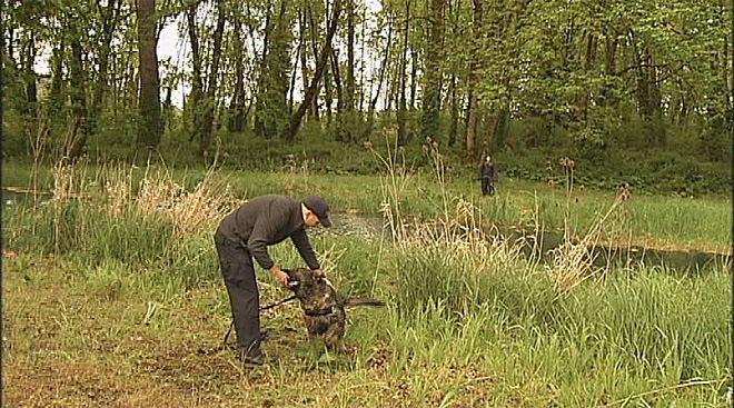 Oregon Police Canine Association training April 30