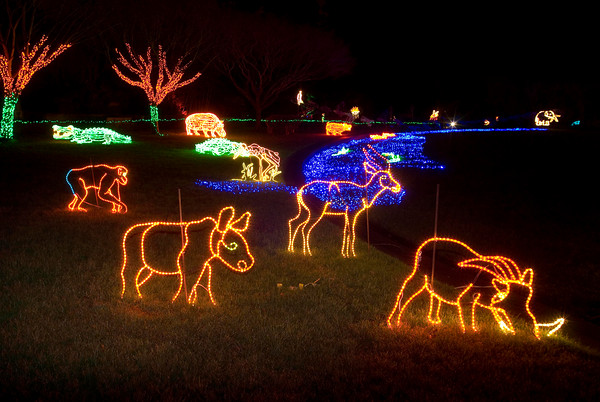 Oregon ZooLights (6)