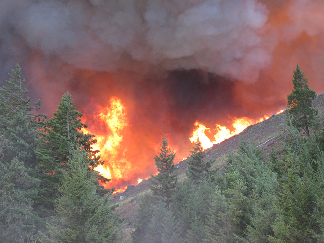 Photo of the Douglas Complex from Friday 7-26 - Courtesy DFPA Specialist Kyle Reed 06