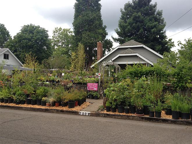Pierce Street Gardens in Eugene (1)