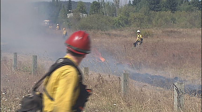 Prescribed burn in West Eugene Wetlands (2)
