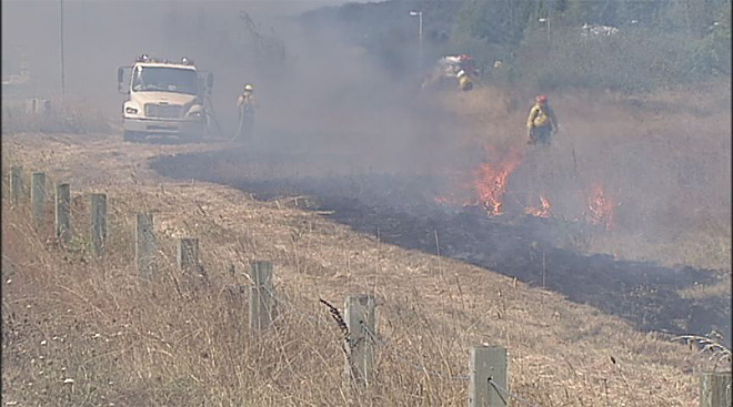 Prescribed burn in West Eugene Wetlands (3)