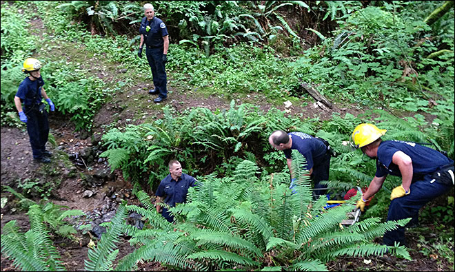 Boy, 13, injured after fall from rope swing