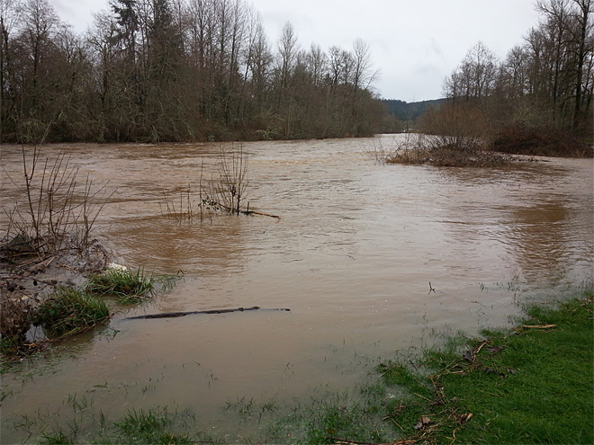 Row River near Cottage Grove rising