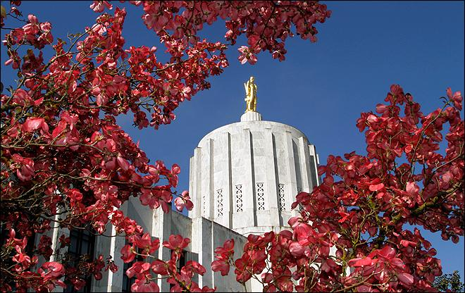 Oregon lobbying bill may create unintended loophole