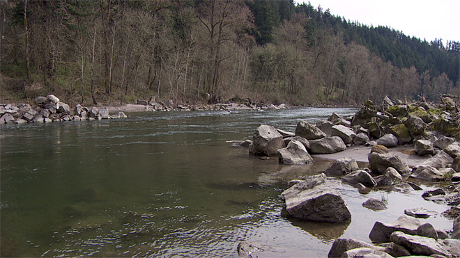 Sandy River smelt