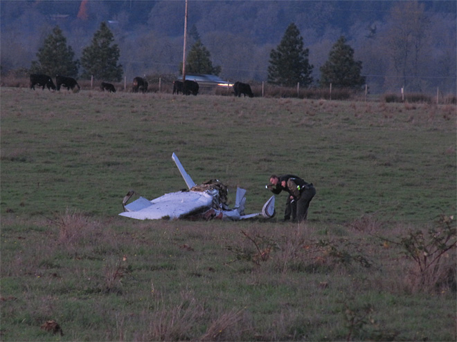Small plane crash kills two November 26 (4)