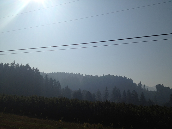 Smoke as seen from Vida September 17