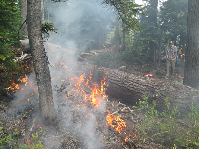 Snowmobile club puts out forest fire