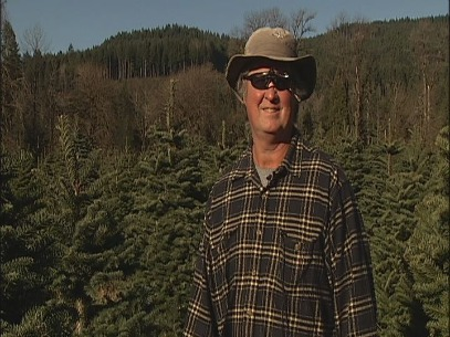 Oregon grows 'greener' Christmas tree