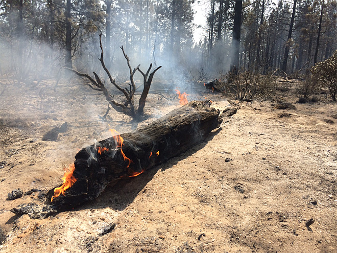 Two Bulls Fire June 9 with Lakeview BLM hand crew (5)