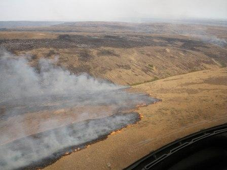 View From Helicopter Of Dry Grassy Hillside Burning July 29th