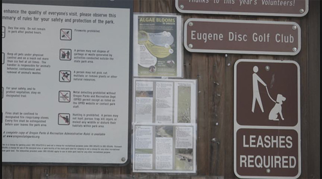 Visitors miss toxic algae warning signs on Fourth of July