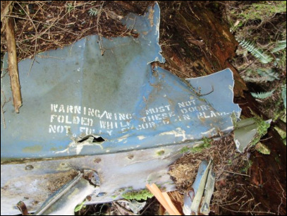State: Leave WWII plane wreckage alone