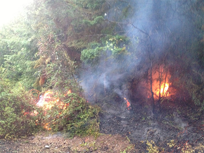 West Fork fire photos from DFPA (4)