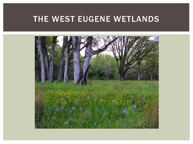 BLM PowerPoint on West Eugene Wetlands project