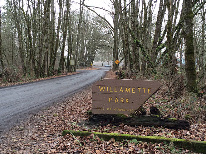 Man found dead in Corvallis park