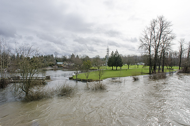 Willamette River floods Alton Baker Park
