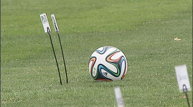 World Cup fields trace roots to Willamette Valley grass farms