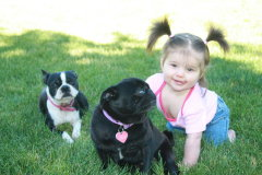 LilyAnn And her Dogs