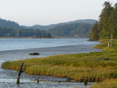 Siuslaw River (Florence)