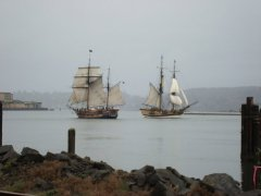 Tall Ships - Coos Bay