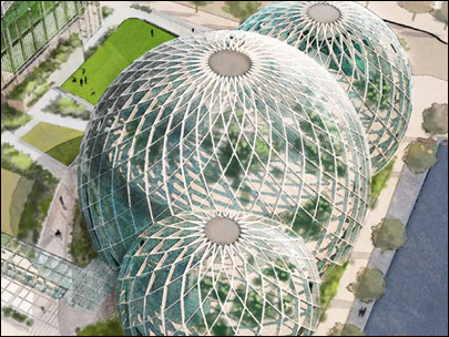 Amazon proposes biodome design for new campus expansion