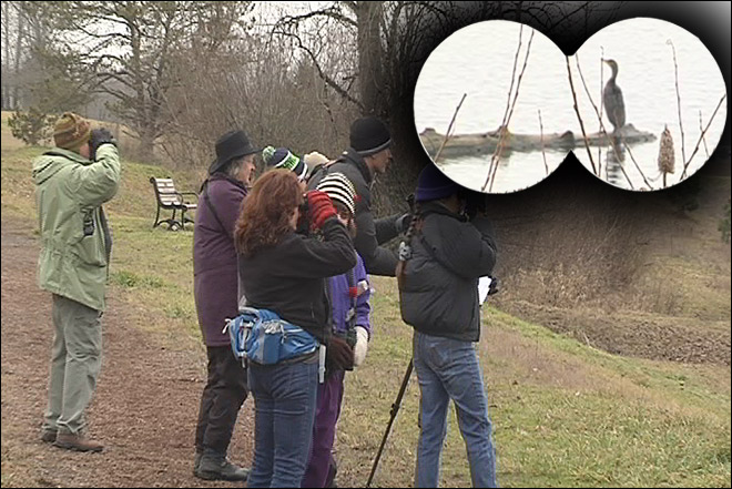 72nd Eugene Christmas Bird Count: 'We're getting good numbers'
