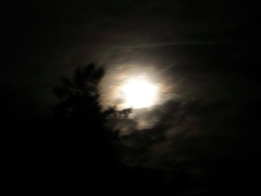 Moon peaking through the clouds