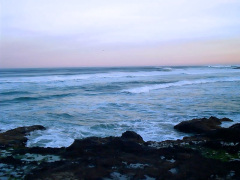 Morning in Yachats
