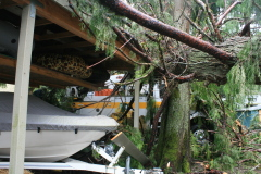 Storm Damage in Fall Creek