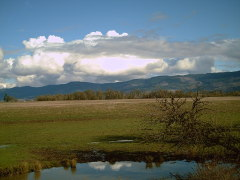 Willamette Valley farmland