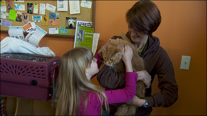 Family reunited with cat after more than 3 years apart