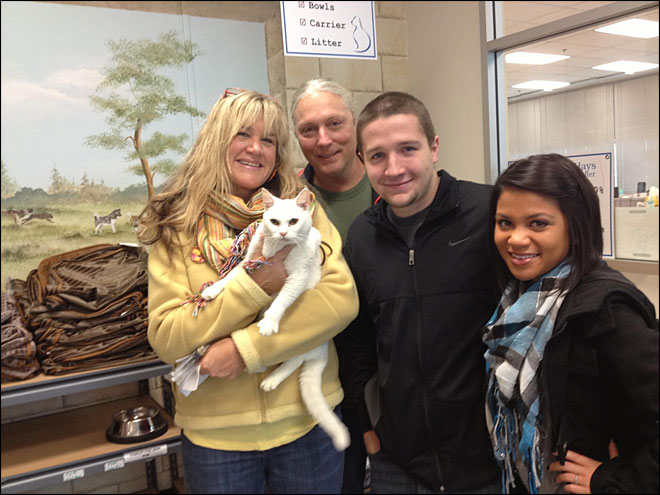 Couple reunites with stolen cat: 'You can't make that stuff up'