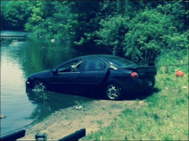 Puppy 'drives' car into pond