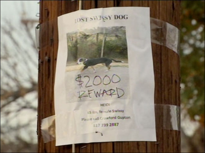 Thief takes dog, brags about it online
