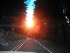 Sunday morning sun coming over Alsea mtm