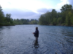 fishing the mckenzie